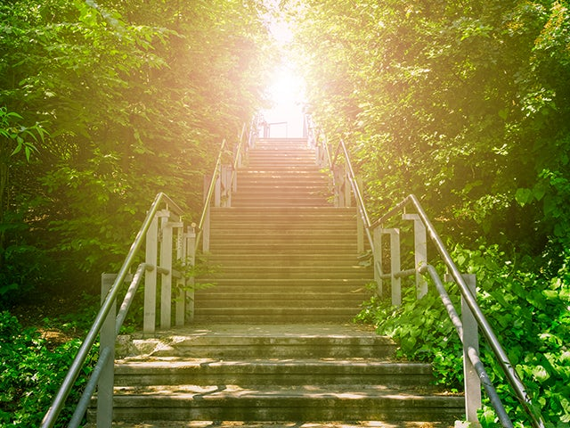Staircase in the woods leading to light | Calibre PERC helps designers target verification rules with precision by leveraging rule deck defined circuit structures in the schematic or layout.
